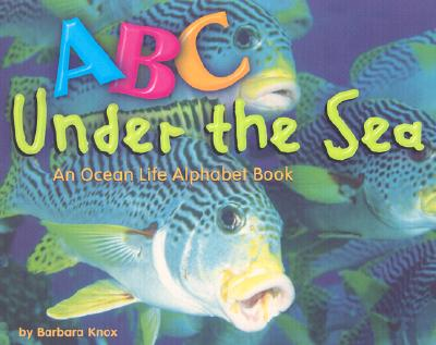 ABC Under the Sea: An Ocean Life Alphabet Book - Knox, Barbara