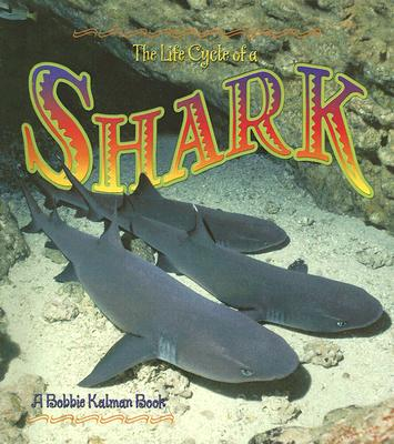 The Life Cycle of a Shark - Crossingham, John, and Kalman, Bobbie