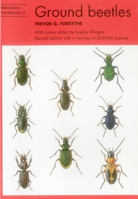 Common Ground Beetles - Forsythe, Trevor G.