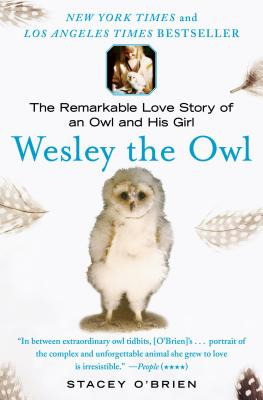 Wesley the Owl: The Remarkable Love Story of an Owl and His Girl - O'Brien, Stacey