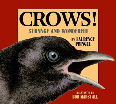 Crows! - Pringle, Laurence