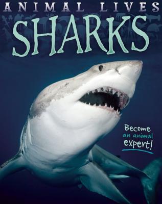 Sharks - Morgan, Sally