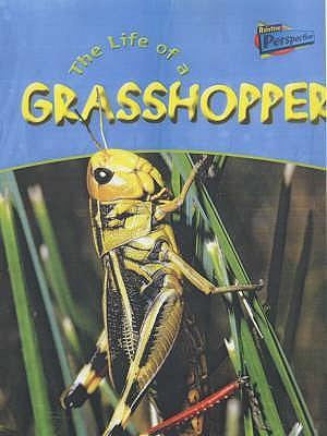 The Life of a Grasshopper - Hibbert, Clare