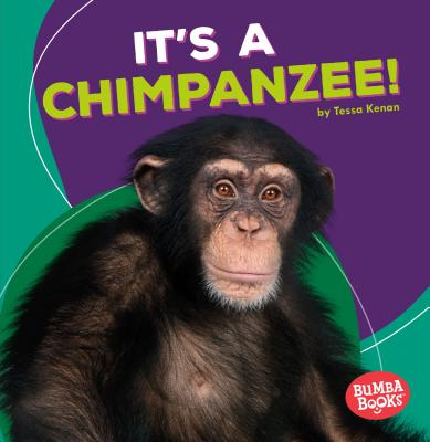 It's a Chimpanzee! - Kenan, Tessa