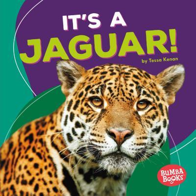 It's a Jaguar! - Kenan, Tessa