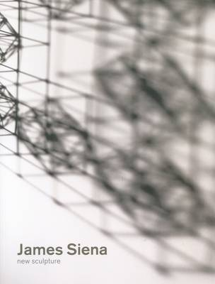 James Siena - New Sculptures -