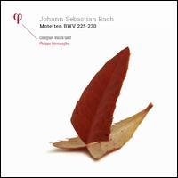 Johann Sebastian Bach: Motetten BWV 225-230 - Collegium Vocale; Damien Guillon (alto); Dorothee Mields (soprano); Hans-Jörg Mammel (tenor); Maria Keohane (soprano);...