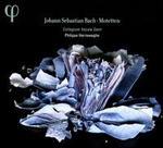 Johann Sebastian Bach: Motetten