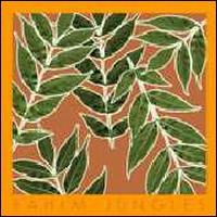 Jungles - Rahim