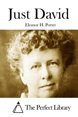 Just David - Porter, Eleanor H, and The Perfect Library (Editor)