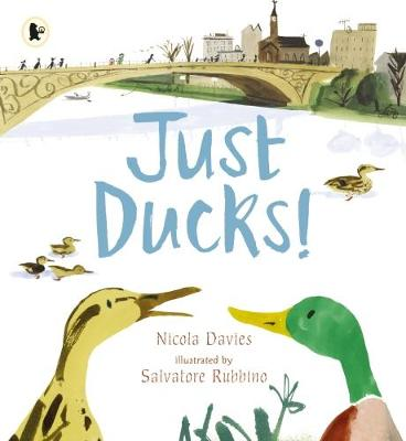 Just Ducks! - Davies, Nicola
