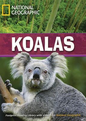 Koalas - Waring, Rob