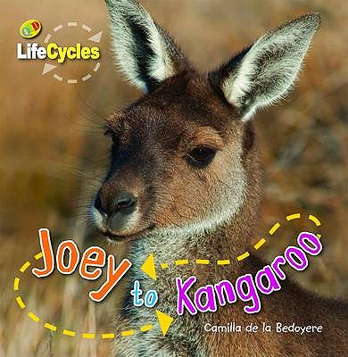 Lifecycles: Joey to Kangaroo - De la Bedoyere, Camilla