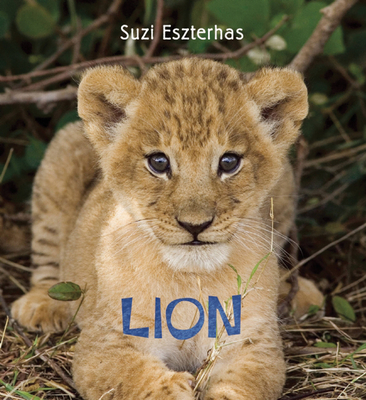 Lion - Eszterhas, Suzi (Photographer)