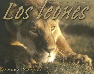 Los Leones - Markle, Sandra