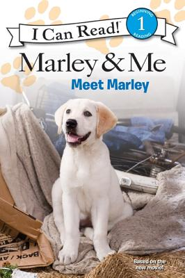 Marley & Me: Meet Marley - Engel, Natalie (Adapted by)