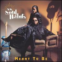 Meant to Be - Nu Soul Habits