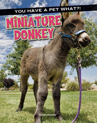 Miniature Donkey - Kenney, Karen
