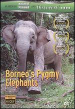 Mutual of Omaha's Wild Kingdom: Borneo's Pygmy Elephants