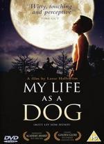 My Life as a Dog - Lasse Hallstr�m
