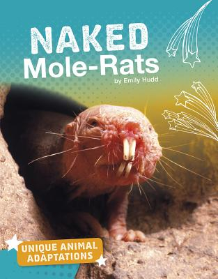 Naked Mole-Rats - Hudd, Emily