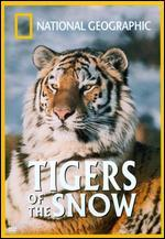 National Geographic: Tigers of the Snow -