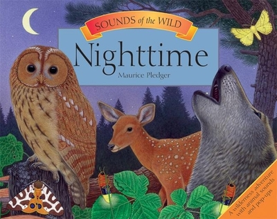 Nighttime - Pledger, Maurice