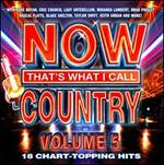 Now That's What I Call Country, Vol. 5 - Various Artists