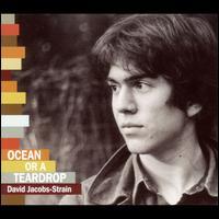 Ocean or a Teardrop - David Jacobs-Strain