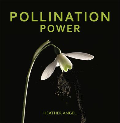 Pollination Power - Angel, Heather