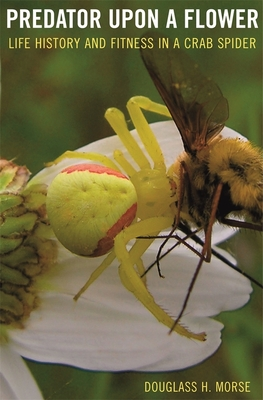 Predator Upon a Flower: Life History and Fitness in a Crab Spider - Morse, Douglass H