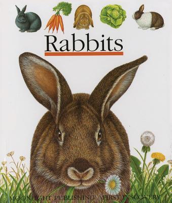 Rabbits - Hugo, Pierre de