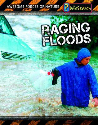Raging Floods - Spilsbury, Louise, and Spilsbury, Richard