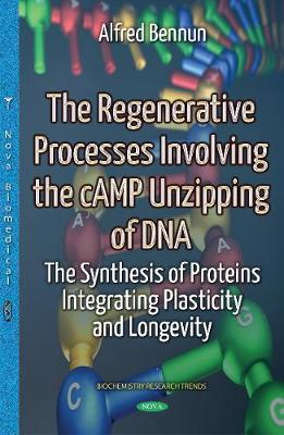 Regenerative Processes Involving the Camp Unzipping of DNA: Synthesis of Proteins Integrating Plasticity & Longevity - Bennun, Alfred (Editor)
