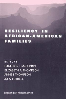 Resiliency in African-American Families - McCubbin, Hamilton I (Editor), and Thompson, Elizabeth a (Editor), and Thompson, Anne I, Dr. (Editor)