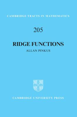 Ridge Functions - Pinkus, Allan