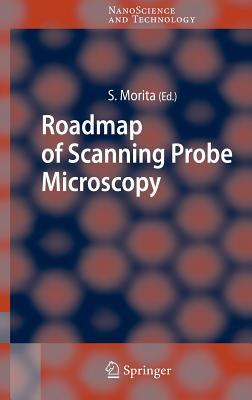 Roadmap of Scanning Probe Microscopy - Morita, Seizo (Editor)