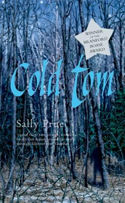 Rollercoasters: Cold Tom Reader - Prue, Sally