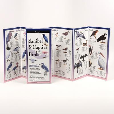 Sanibel & Captiva Birds - Simmons, Ernest