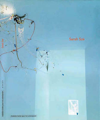 Sarah Sze - Sans, Jerome, and Schefer, Jean Louis, and Sze, Sarah