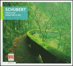 Schubert: Trio, D929; Sonatine, D385