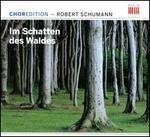 Schumann: Im Schatten des Waldes