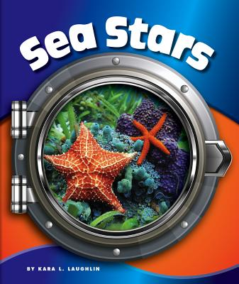 Sea Stars - Laughlin, Kara L