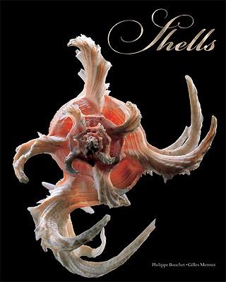 Shells - Bouchet, Philippe, and Mermet, Gilles (Photographer)