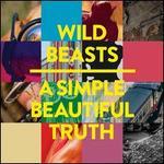 Simple Beautiful Truth [Remixes]