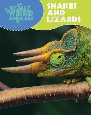 Snakes and Lizards - Hibbert, Clare