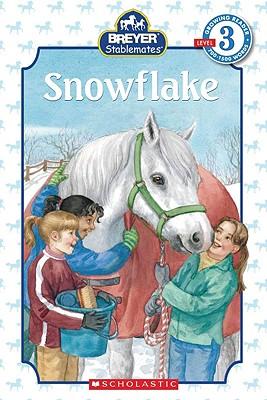 Snowflake - Weyn, Suzanne