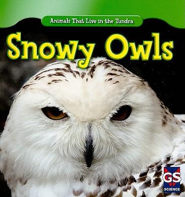 Snowy Owls - Patrick, Roman