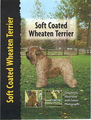 Soft Coated Wheaten Terrier - Cunliffe, Juliette