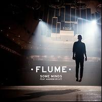 Some Minds - Flume
